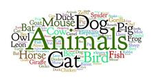 Words Cloud Of Animals