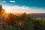 Rays of Sunshine - 172281275
