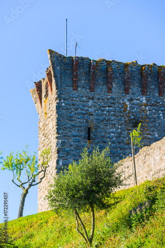 Fotografering Stunning medieval castle of Ourem. Santarem District. Portugal.