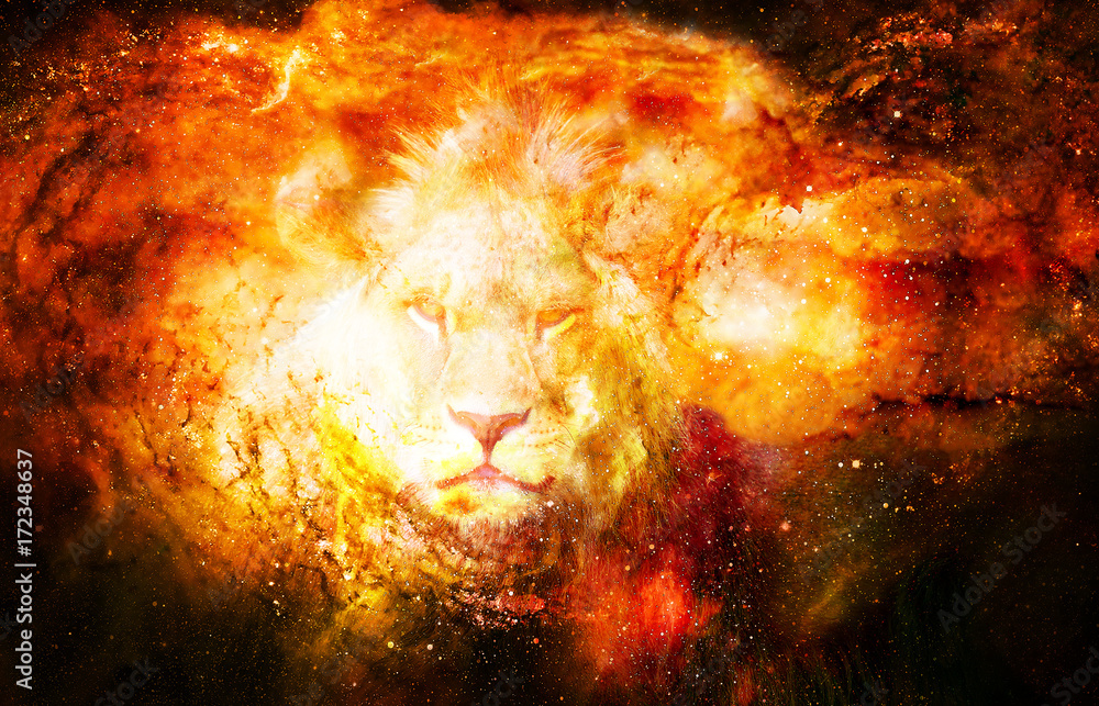Fototapeta Lion in the cosmic space. Lion photos and graphic effect.