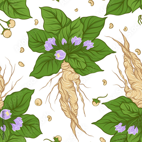 Papel de parede Seamless pattern and background with mandragora. Stock vector il
