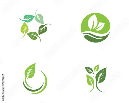 Obraz Tree leaf ecology nature vector icon - fototapety do salonu