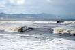 強風で濁る海 素材