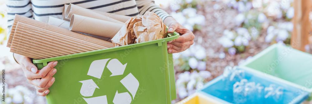 Fototapeta Person taking care of ecosystem