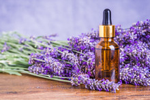 Lavender Oil Or Essential Oil,...