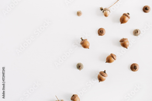 Acorns collage. Flat lay autumn fall minimal concept. Wallpaper Mural