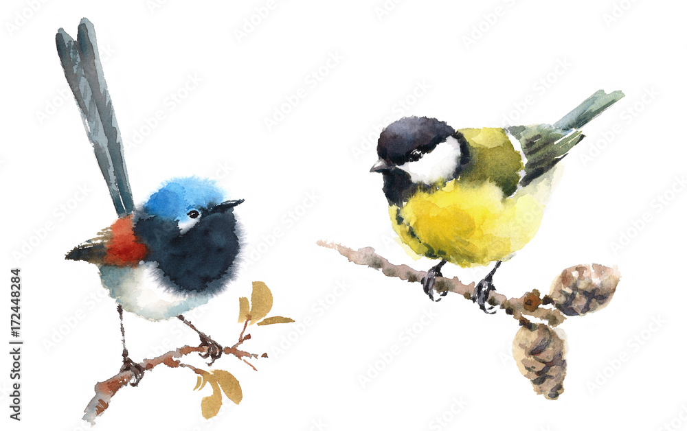 Watercolor Bird Tit On Branch Canvas Wall Art prints high quality