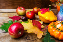 Ripe Apples And Yellow Gourd With  Leaves, Close Up.