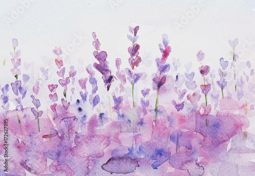 lawenda-fioletowe-kwiaty-akwarela-malarstwo