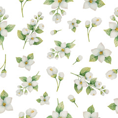 FototapetaWatercolor vector seamless pattern of flowers and branches Jasmine isolated on a white background.