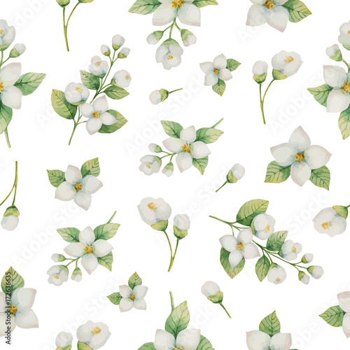 Watercolor vector seamless pattern of flowers and branches Jasmine isolated on a white background Tableau sur Toile