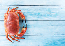 Cooked Brown Crab Or Edible Cr...