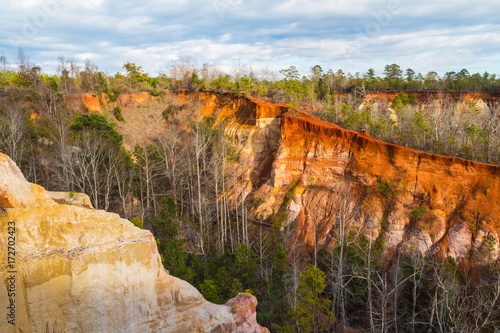 Deurstickers Canyon Aerial view of canyons and thicket in the Providence Canyon State Park in sunny autumn day, Georgia, USA