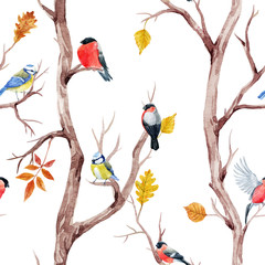 fototapeta drzewa i ptaki wzorek