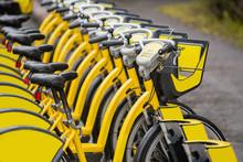 Row Of Rental Bikes