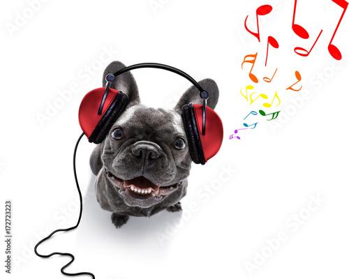 pies-sluchajacy-muzyki-z-czerwonymi-sluchawkami-na-uszach-kolorowe-nutki-buldog