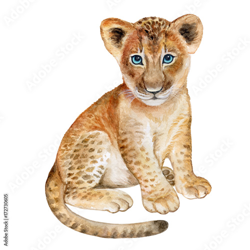 Lion baby watercolor Isolated on white background. Watercolo. Illustration