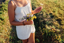 Young Woman Picking Flowers In...