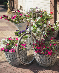 Fototapeta na wymiar vintage bicycle on vintage wooden house wall