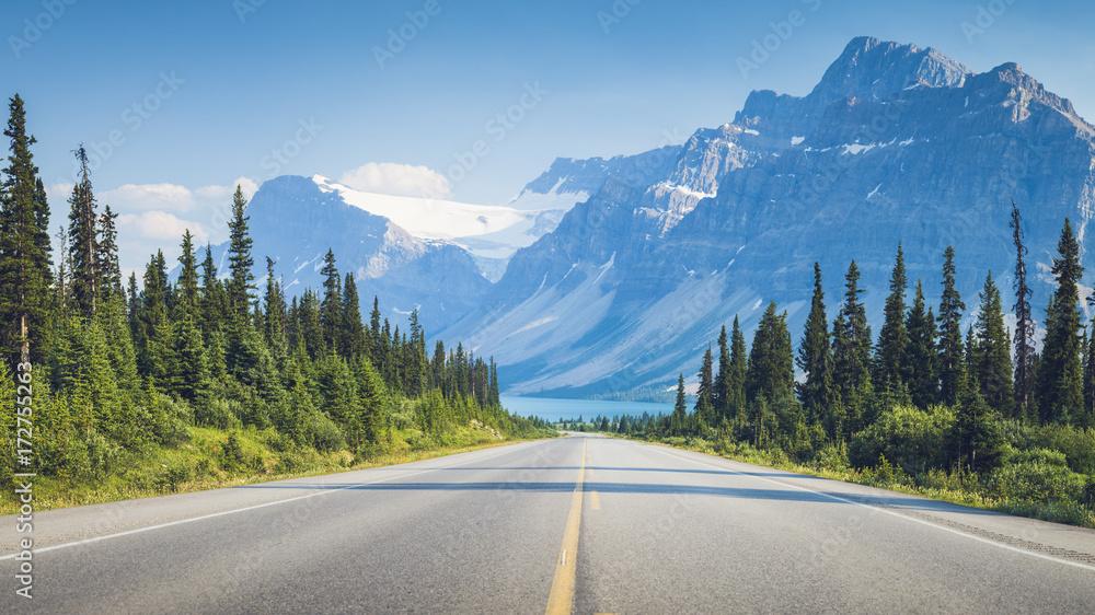 Fototapety, obrazy: Bow Lake