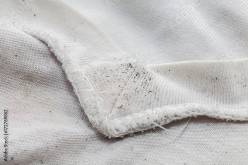 Fotografie, Obraz  moldy of the dirty cloth