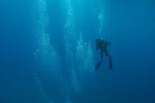 A Scuba Diver Heads Toward Th...