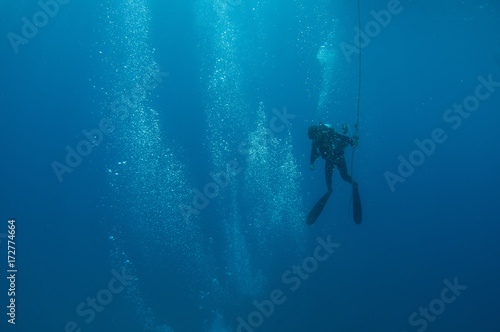 A scuba diver heads toward the surface after a dive. Canvas-taulu