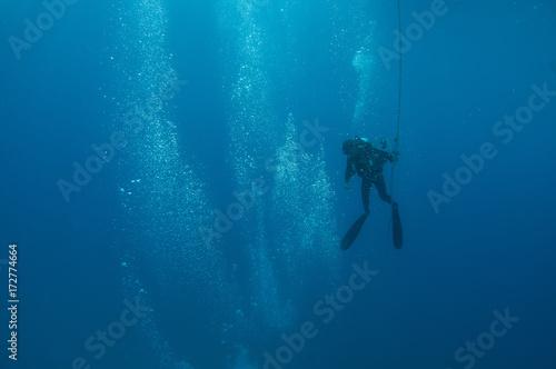 Fotografia, Obraz A scuba diver heads toward the surface after a dive.