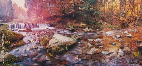 Wall Murals Melon Autumn forest, mountain stream. Beautiful autumn forest, rocks