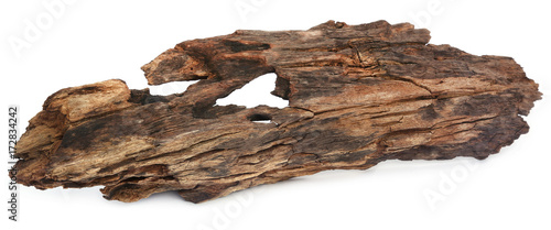 Bogwood Wallpaper Mural
