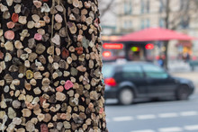 Tree On The Street Unter Den L...