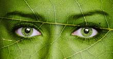Leaf Texture On Human Face. Ec...
