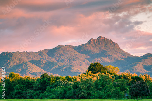 Foto op Plexiglas Zuid Afrika Beautiful sunset and dark clouds on rice fields with trees and big mountain background in Phrae Thailand.