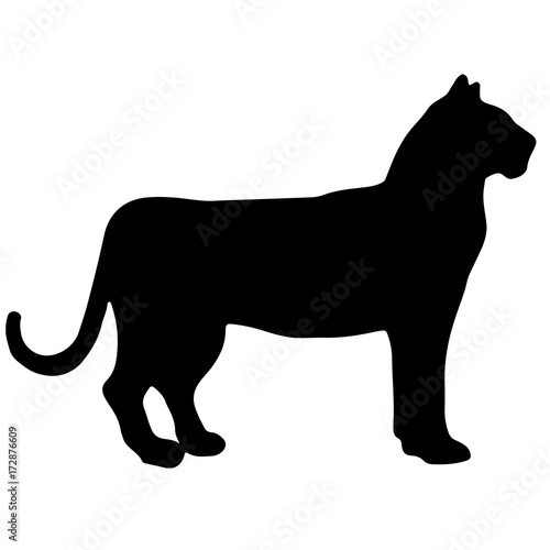Photo  tiger black and white vector silhouette