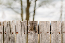 Top Of Wooden Old Fence