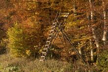 Hochsitz Am Waldrand - Wald Im Herbst