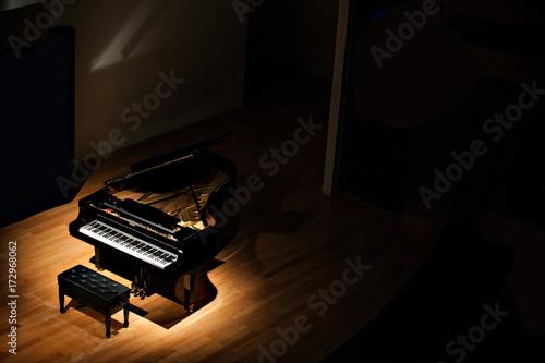 Cuadros en Lienzo  black grand piano at spot light in dark room