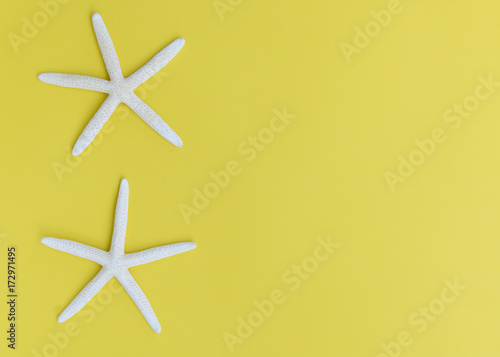 Flat lay star fish on yellow background,top view