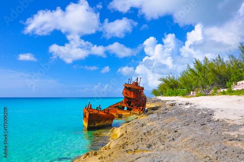 Rustic shipwreck in Bimini, Bahamas. Slika na platnu