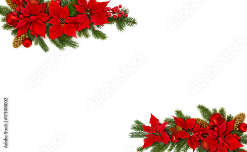 cf5ba034a Frame of flower of red poinsettia, branch christmas tree, christmas ball