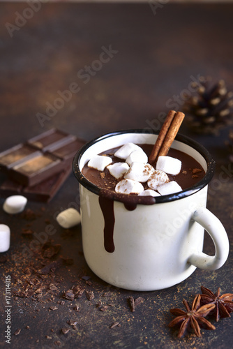 Foto op Canvas Chocolade Homemade spicy hot chocolate with marshmallows.