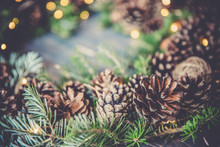 Holiday Background,pine Cone C...