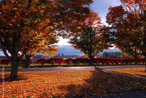 Fotografía  Fall colors in New England