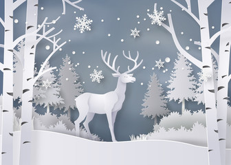FototapetaDeer in forest with snow.