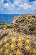 Meer Landschaft Karpathos