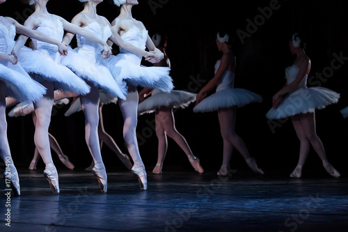 Poster Cygne ballet, art, tradition concept. four young caucasian girls wearing dresses decorated with feathers dancing well-known part of ballet swan lake, la danse des petite cygnes