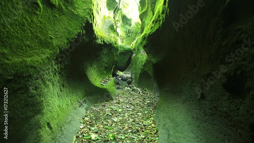 Fotografía  苔の洞門
