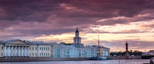Stormy Day In St. Petersburg A...