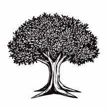Tree Vector Illustration Logo ...