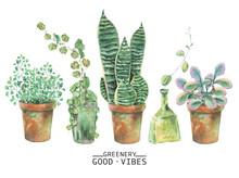 Watercolor Green Plants In Pots
